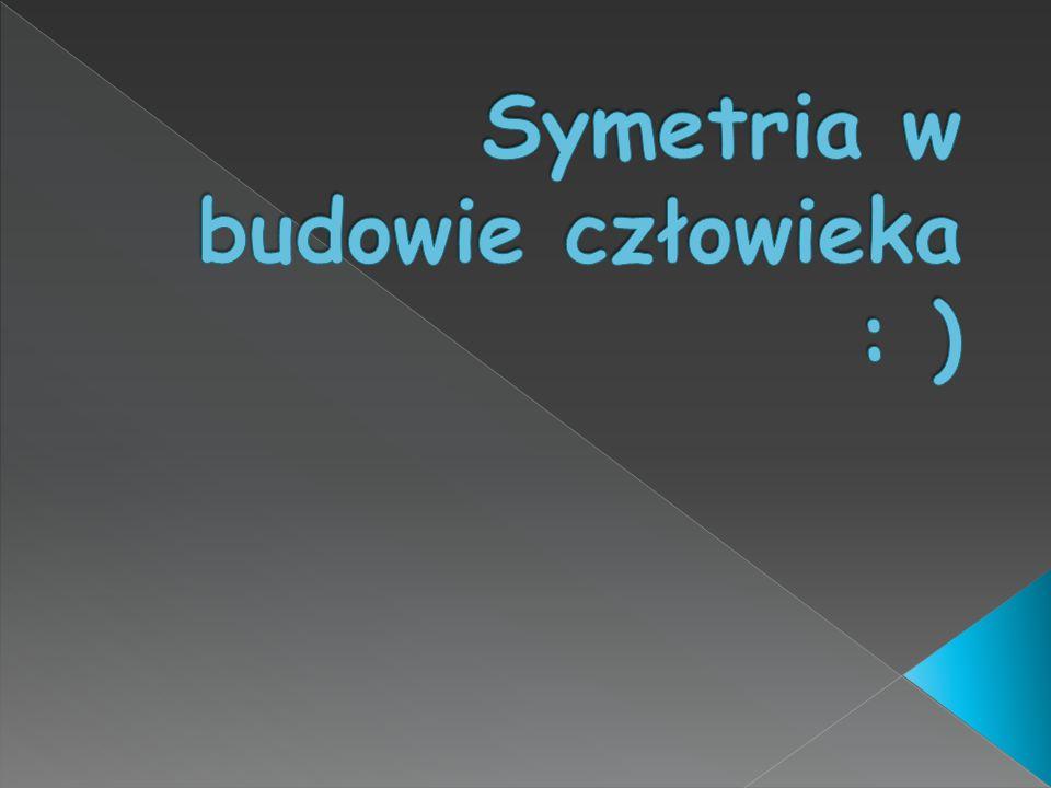 Symetria w budowie człowieka : )