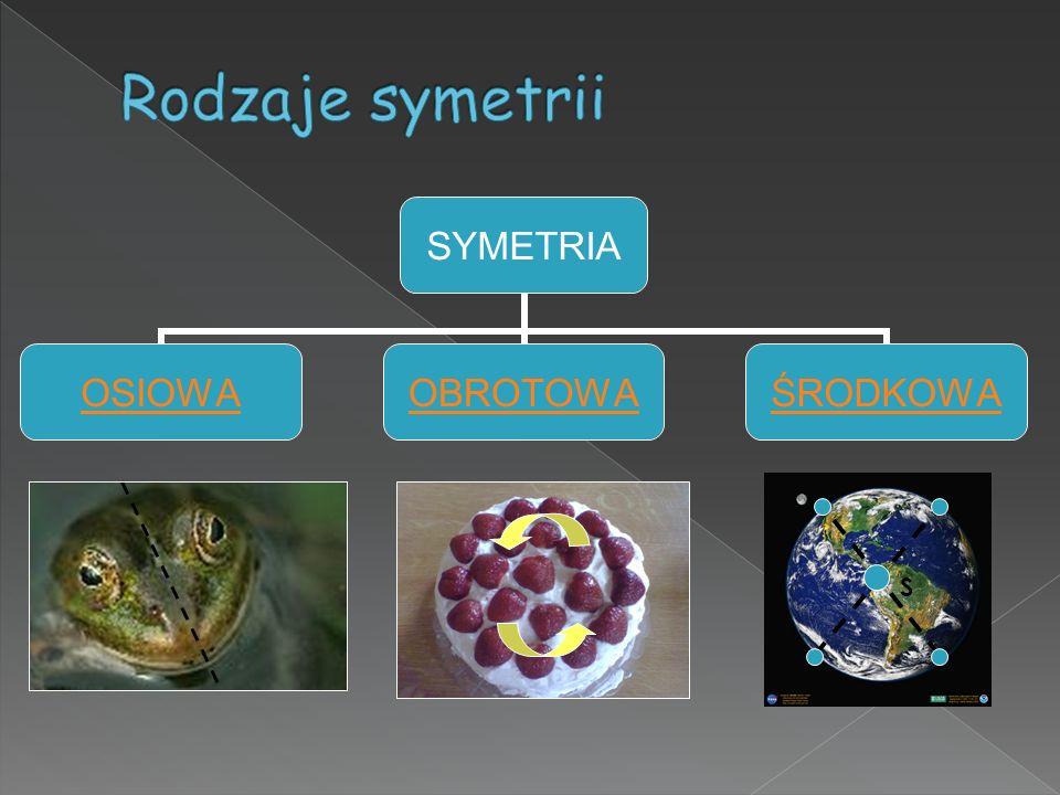 Rodzaje symetrii S