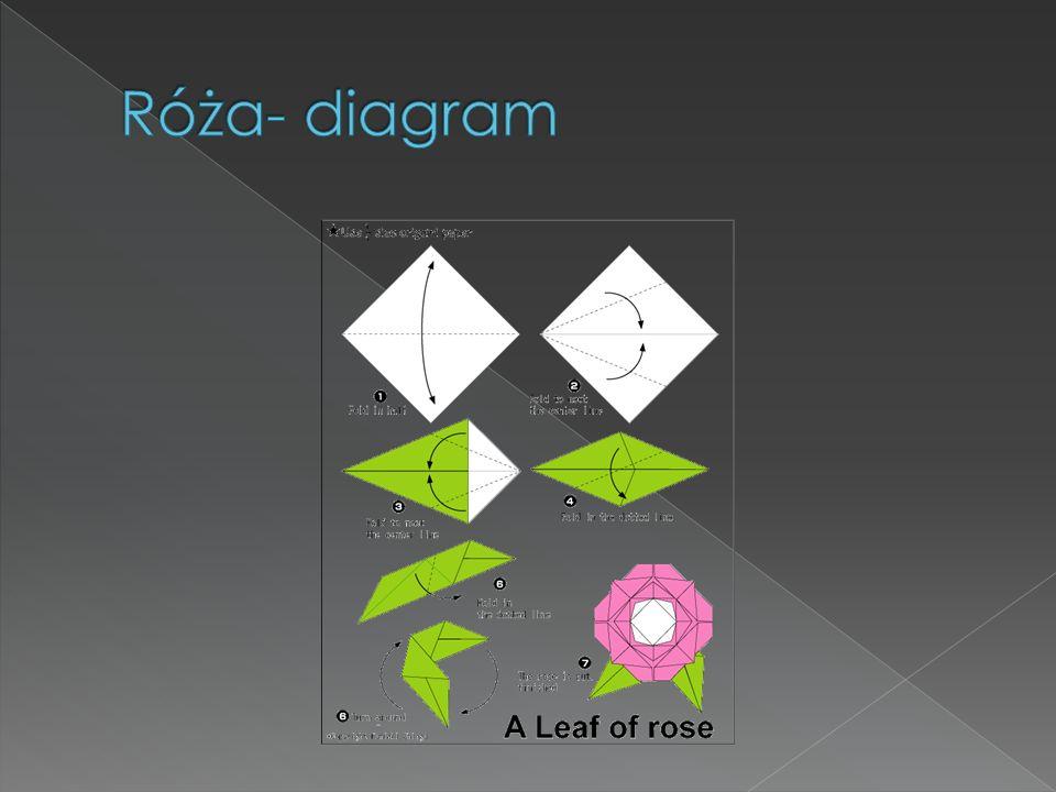 Róża- diagram