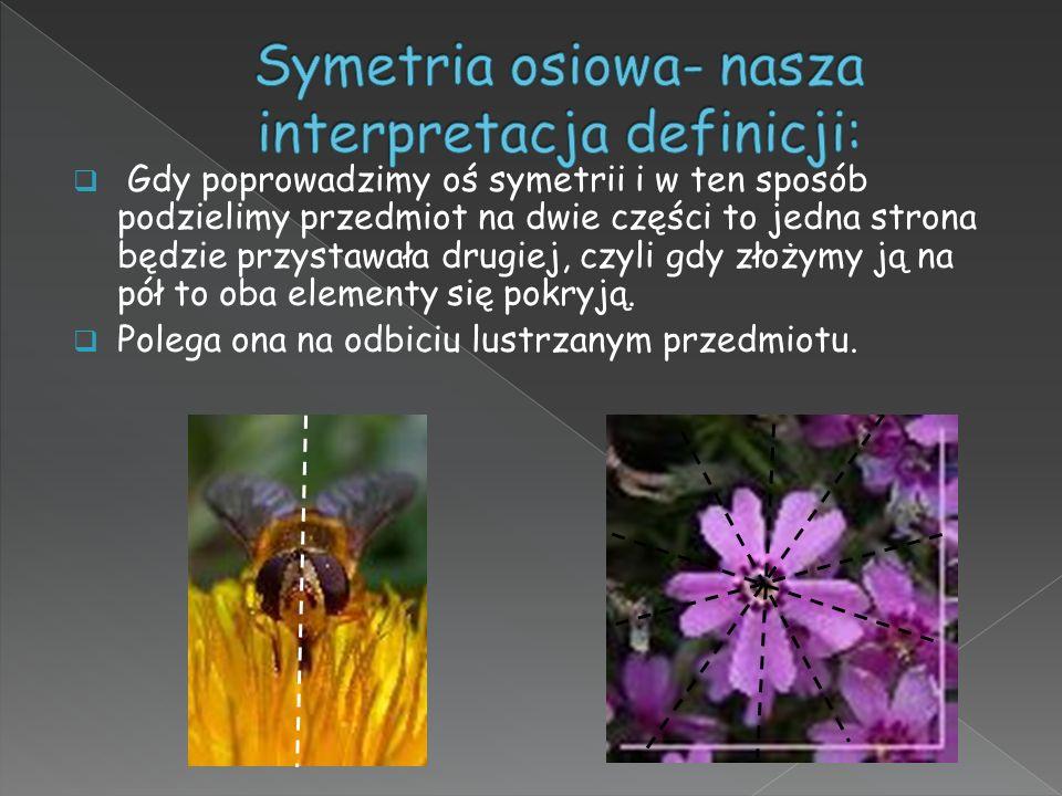 Symetria osiowa- nasza interpretacja definicji: