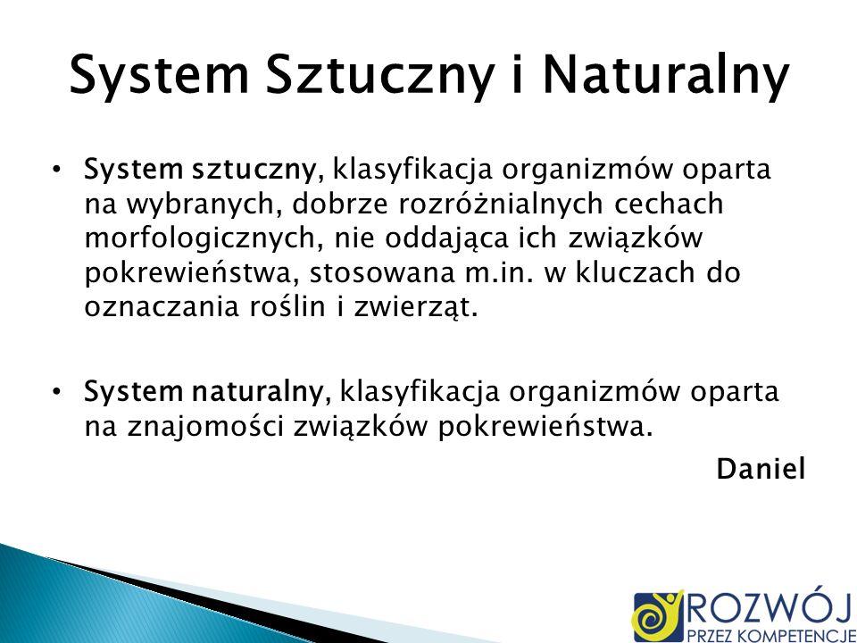 System Sztuczny i Naturalny
