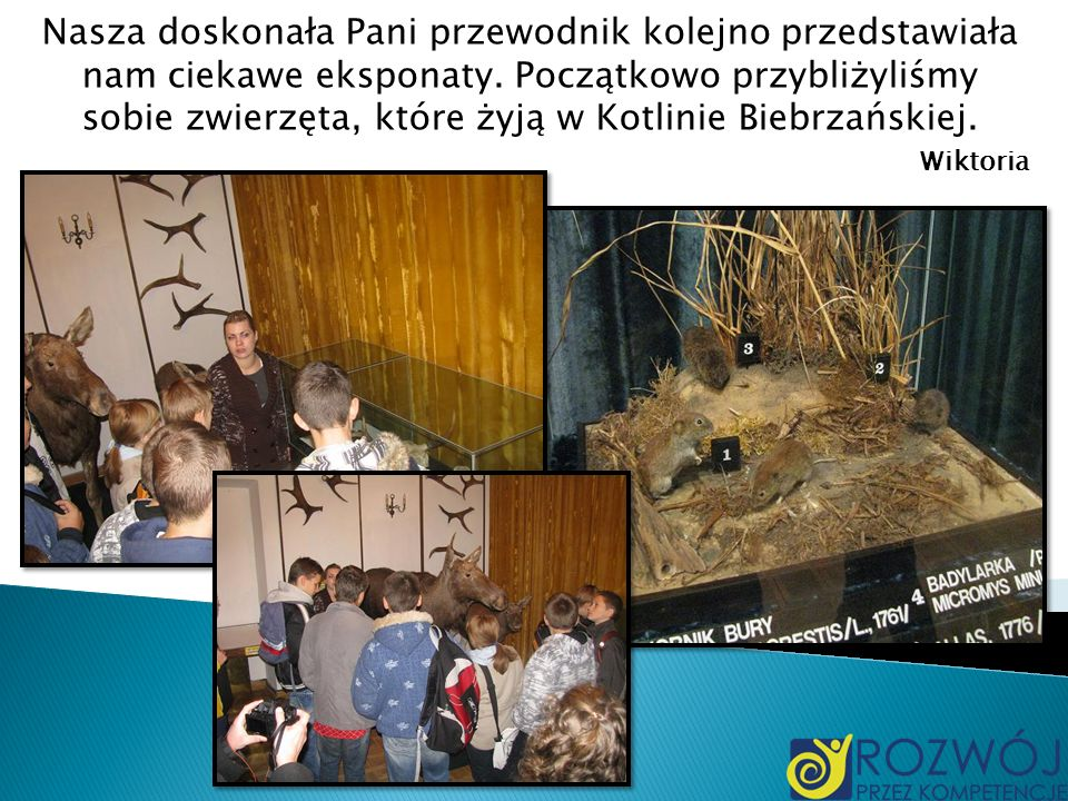 Nasza doskonała Pani przewodnik kolejno przedstawiała nam ciekawe eksponaty. Początkowo przybliżyliśmy sobie zwierzęta, które żyją w Kotlinie Biebrzańskiej.