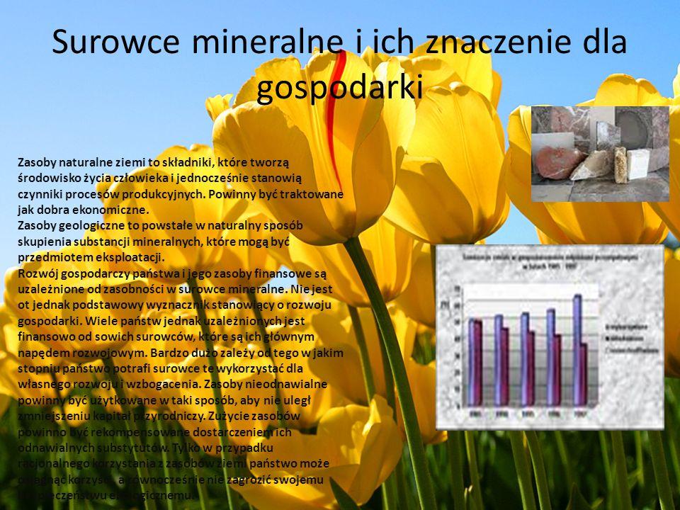 Surowce mineralne i ich znaczenie dla gospodarki