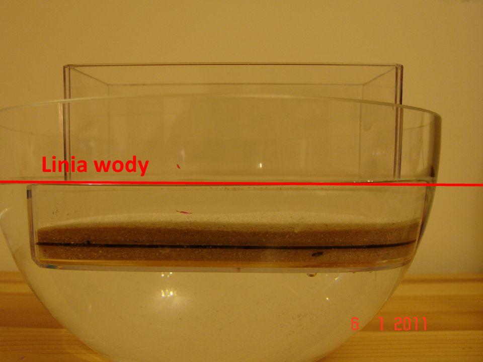Linia wody