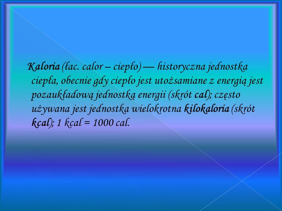 Kaloria (łac.