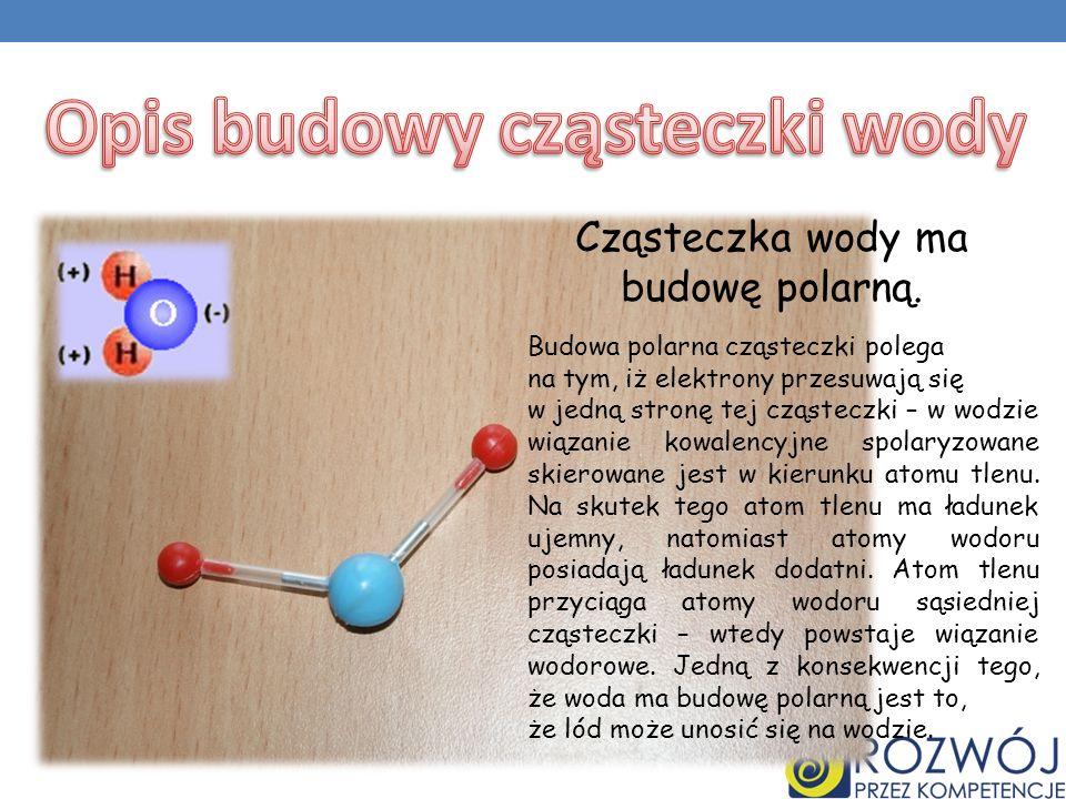 Opis budowy cząsteczki wody