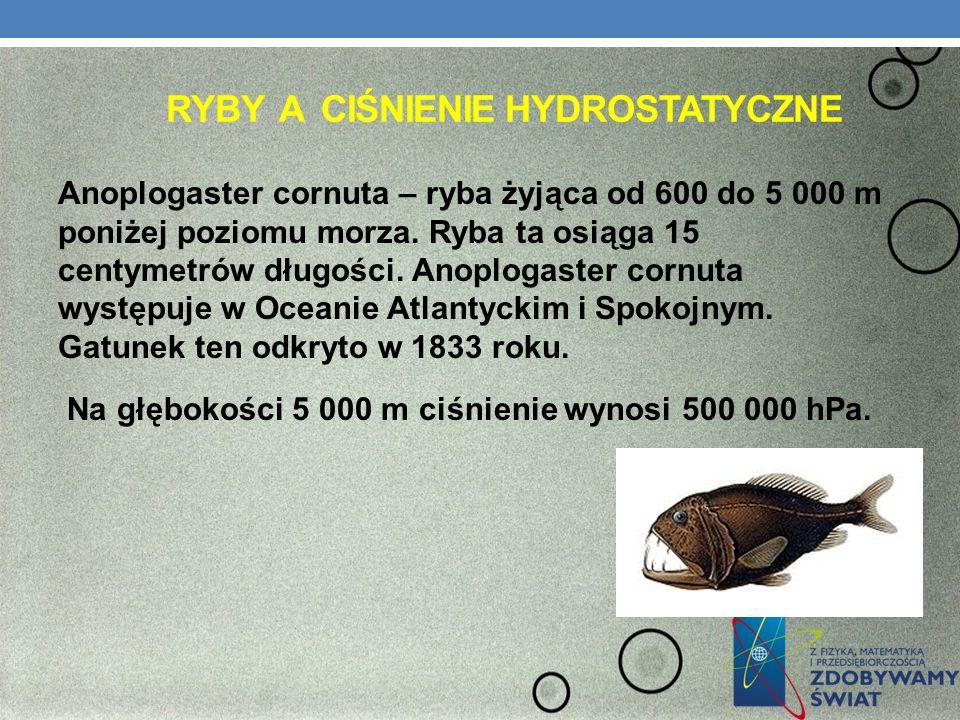 Ryby a ciśnienie hydrostatyczne
