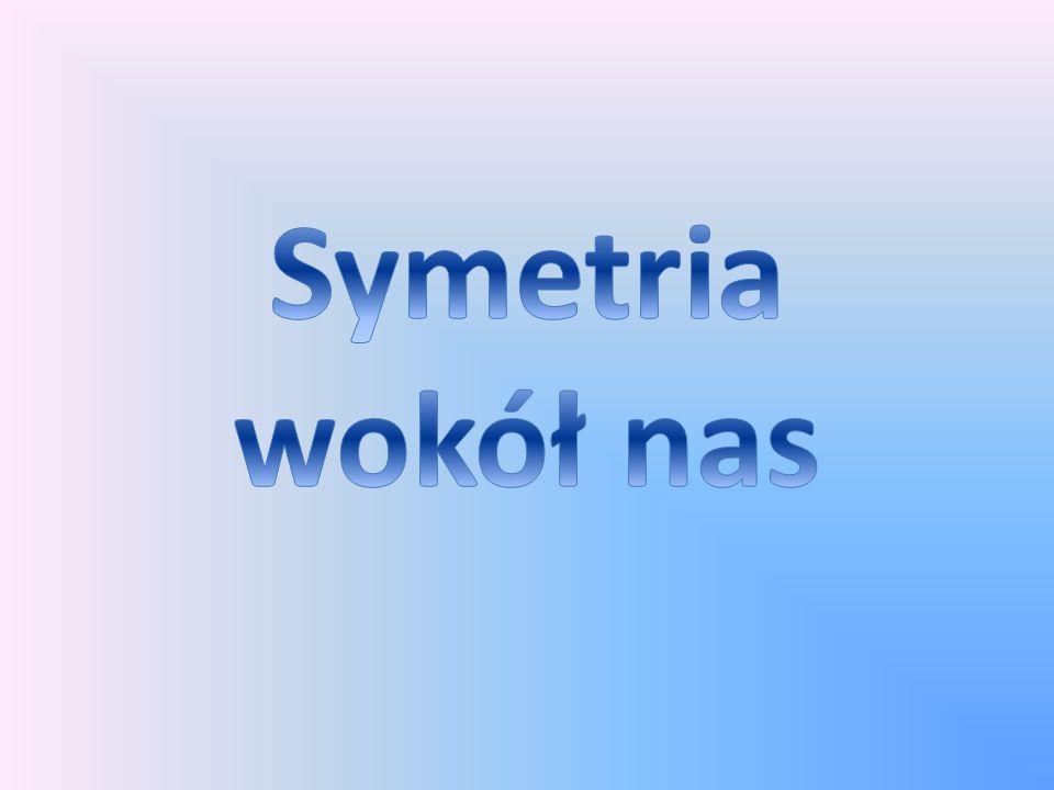 Symetria wokół nas