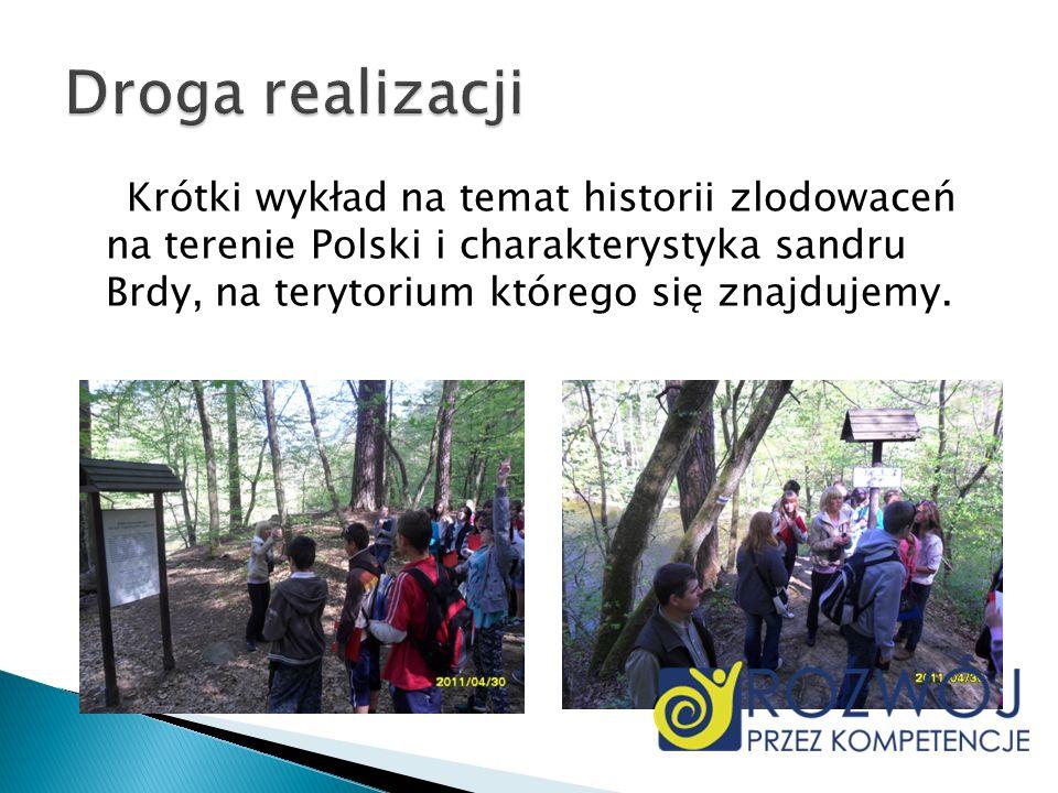 Droga realizacjiKrótki wykład na temat historii zlodowaceń na terenie Polski i charakterystyka sandru Brdy, na terytorium którego się znajdujemy.