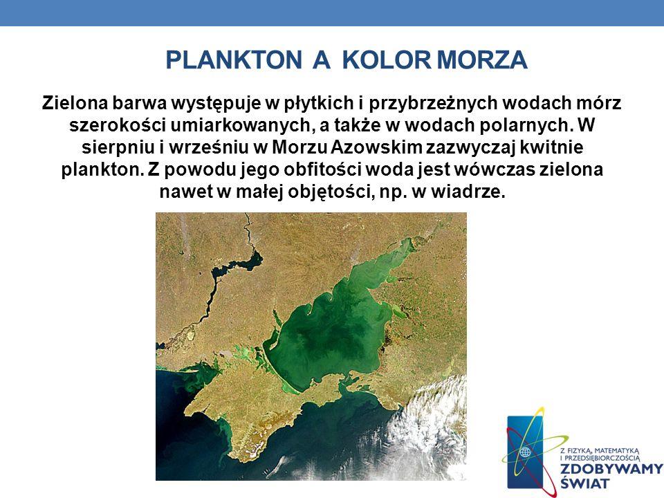 Plankton a kolor morza