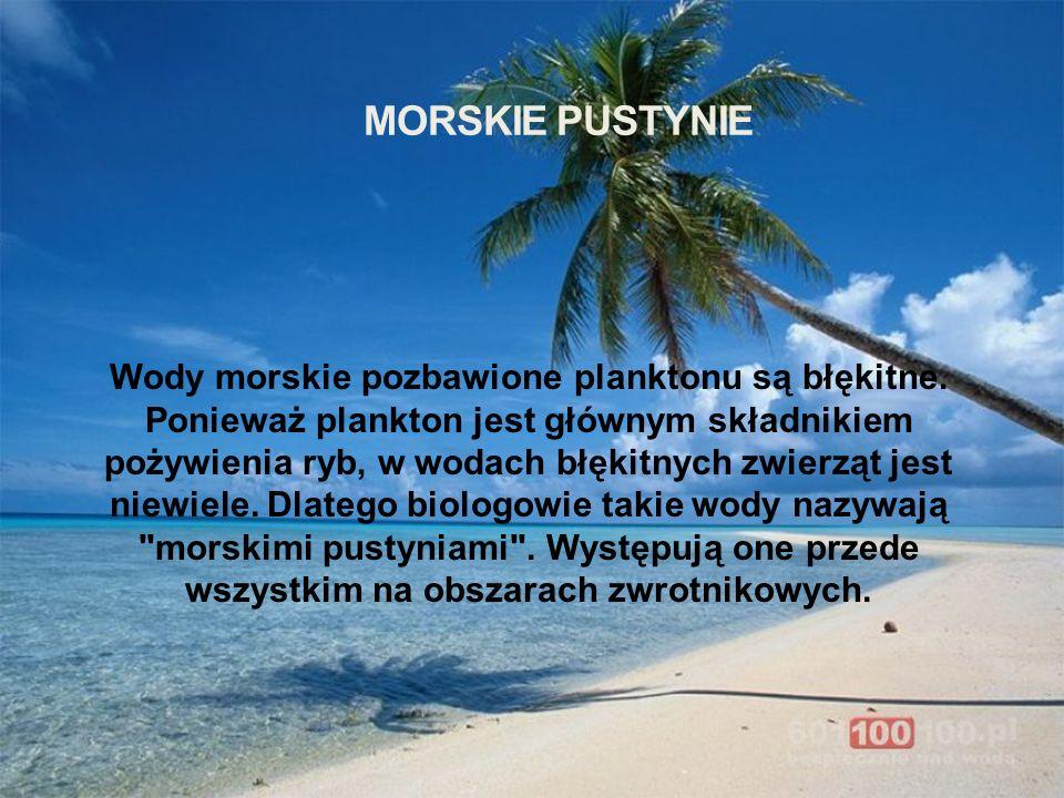 Morskie pustynie