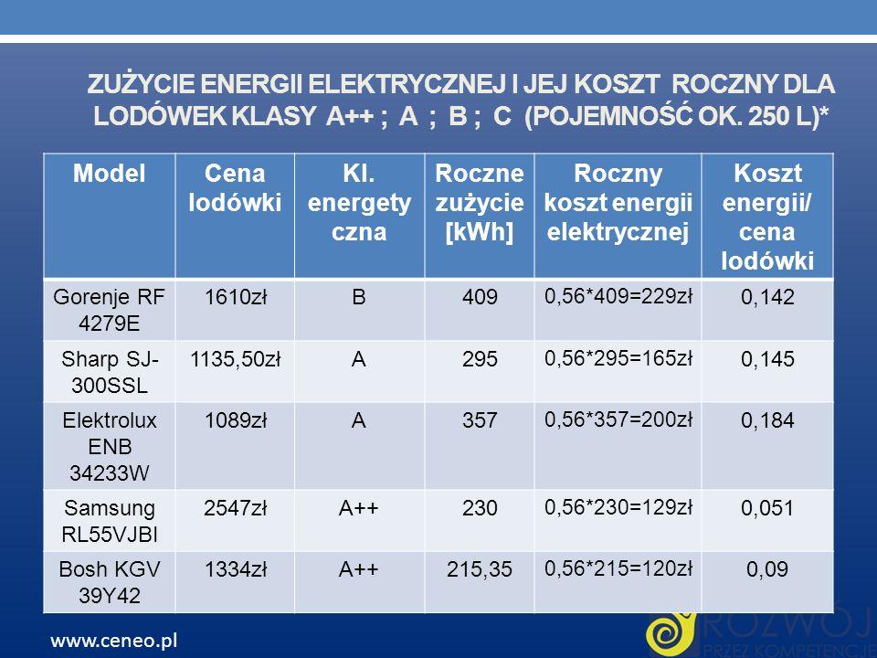 Roczny koszt energii elektrycznej