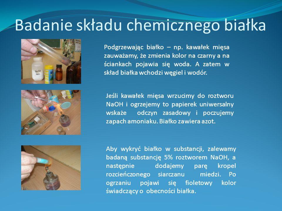 Badanie składu chemicznego białka