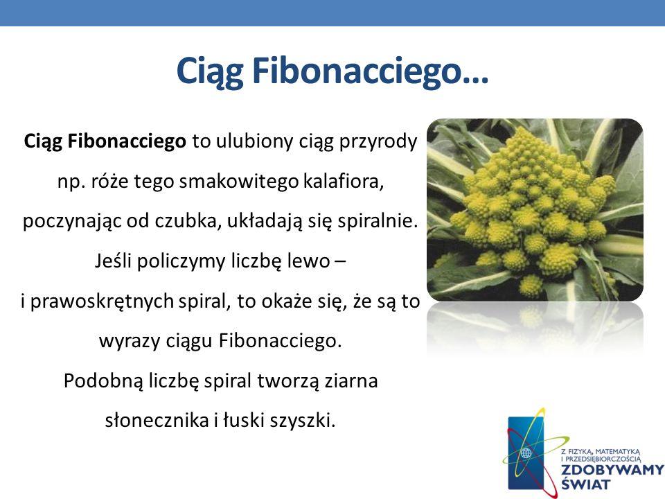 Ciąg Fibonacciego…