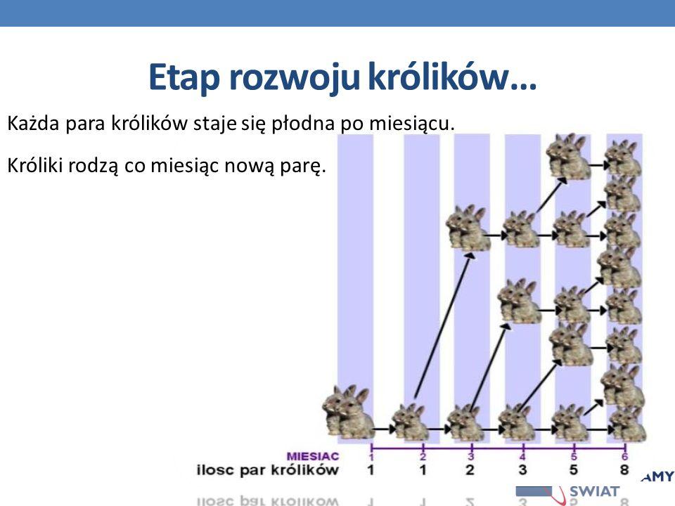 Etap rozwoju królików…
