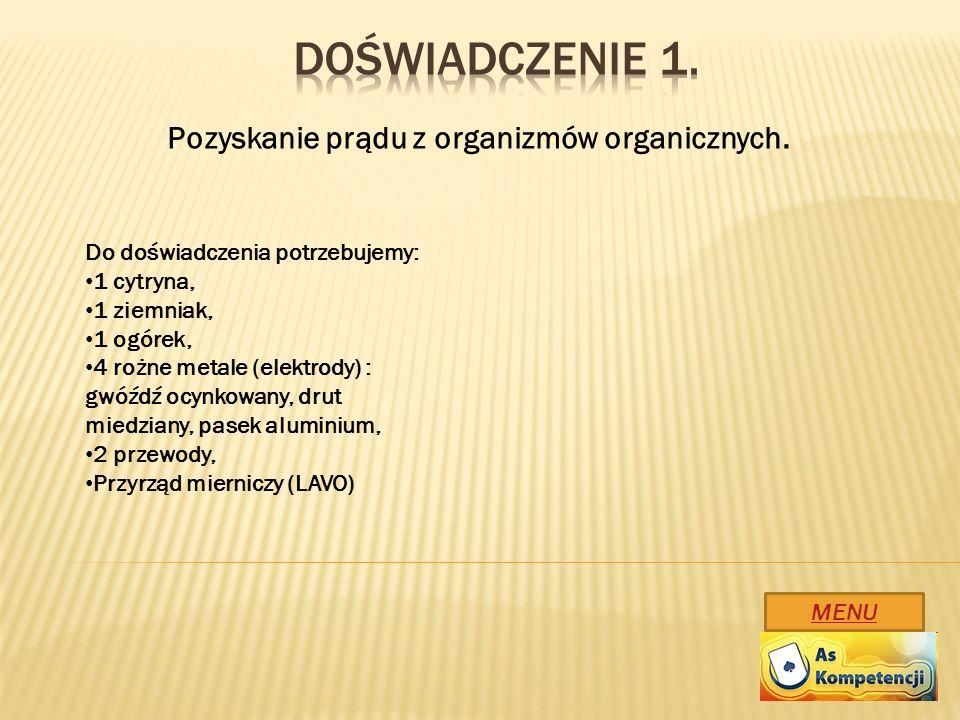 Doświadczenie 1. Pozyskanie prądu z organizmów organicznych.