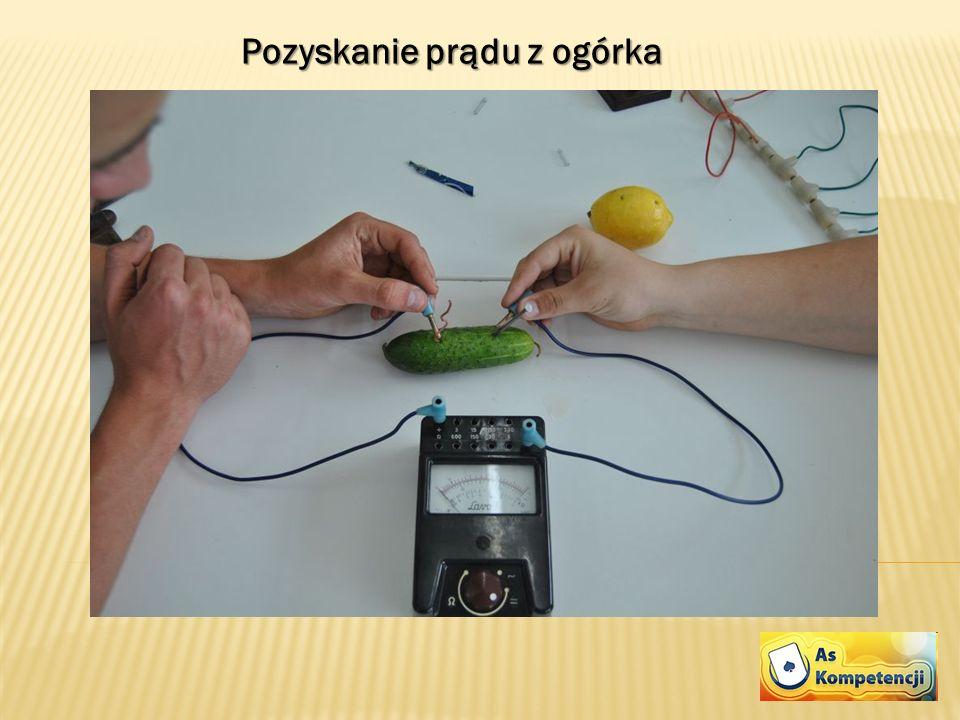 Pozyskanie prądu z ogórka