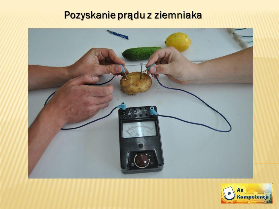 Pozyskanie prądu z ziemniaka