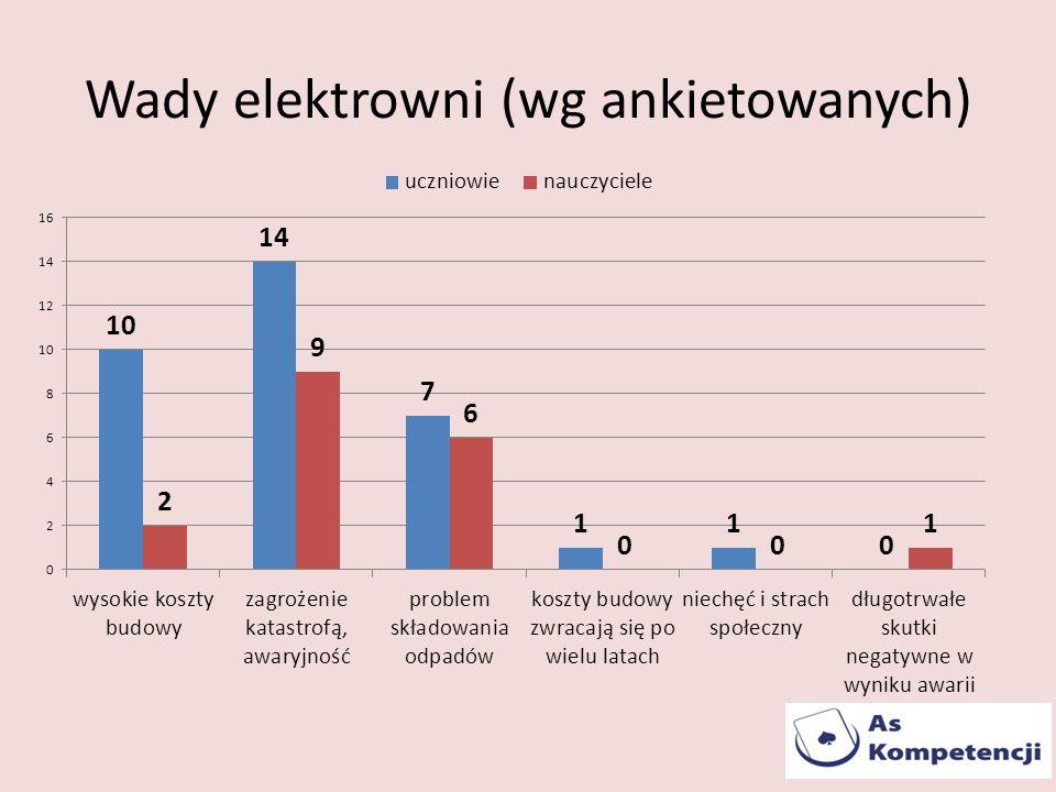Wady elektrowni (wg ankietowanych)
