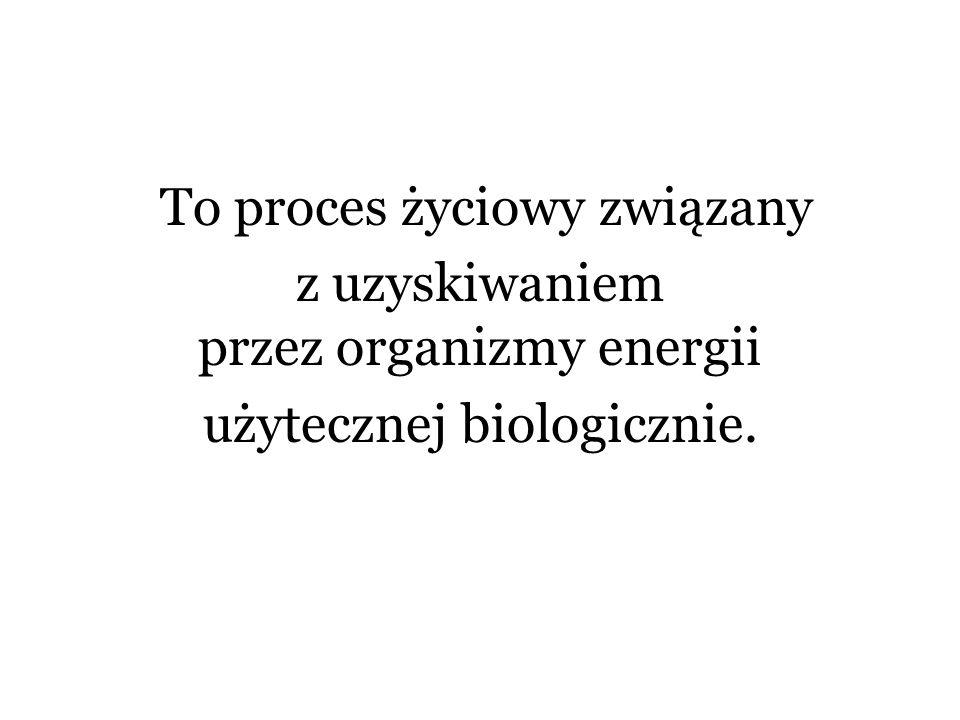 To proces życiowy związany z uzyskiwaniem przez organizmy energii użytecznej biologicznie.