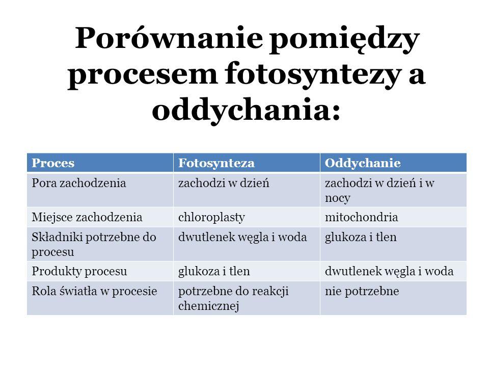 Porównanie pomiędzy procesem fotosyntezy a oddychania: