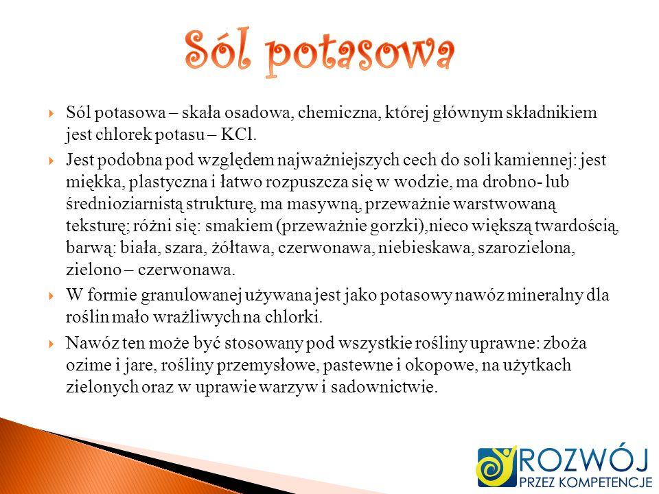 Sól potasowa Sól potasowa – skała osadowa, chemiczna, której głównym składnikiem jest chlorek potasu – KCl.