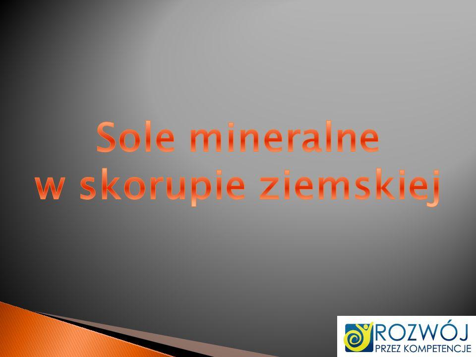 Sole mineralne w skorupie ziemskiej