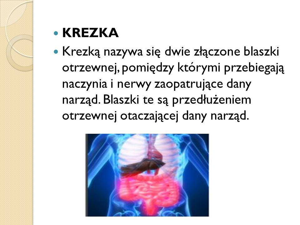 KREZKA