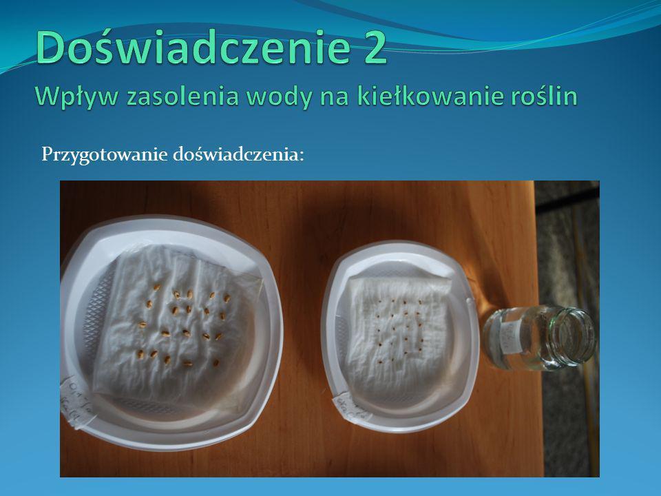 Doświadczenie 2 Wpływ zasolenia wody na kiełkowanie roślin