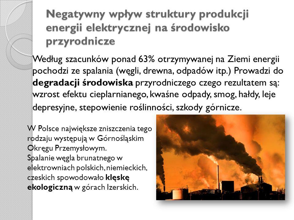 Negatywny wpływ struktury produkcji energii elektrycznej na środowisko przyrodnicze