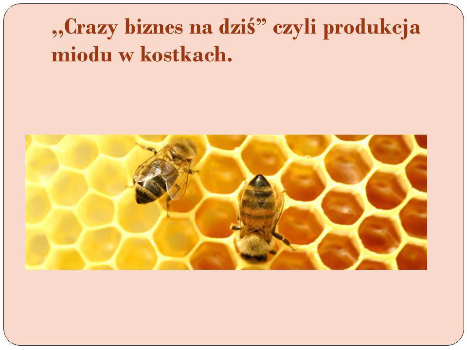 ,,Crazy biznes na dziś czyli produkcja miodu w kostkach.