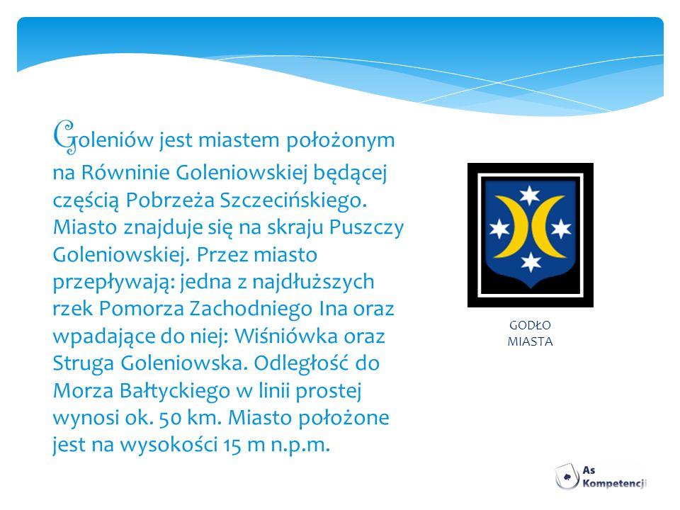 Goleniów jest miastem położonym na Równinie Goleniowskiej będącej częścią Pobrzeża Szczecińskiego. Miasto znajduje się na skraju Puszczy Goleniowskiej. Przez miasto przepływają: jedna z najdłuższych rzek Pomorza Zachodniego Ina oraz wpadające do niej: Wiśniówka oraz Struga Goleniowska. Odległość do Morza Bałtyckiego w linii prostej wynosi ok. 50 km. Miasto położone jest na wysokości 15 m n.p.m.