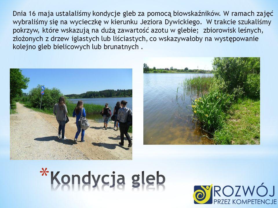 Dnia 16 maja ustalaliśmy kondycje gleb za pomocą biowskaźników