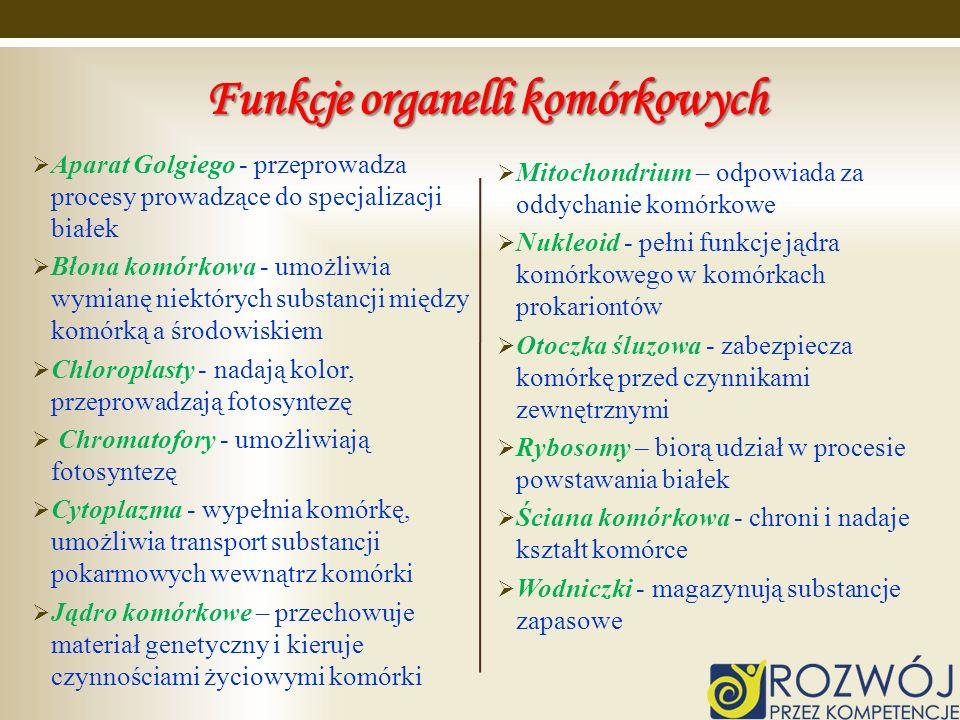 Funkcje organelli komórkowych