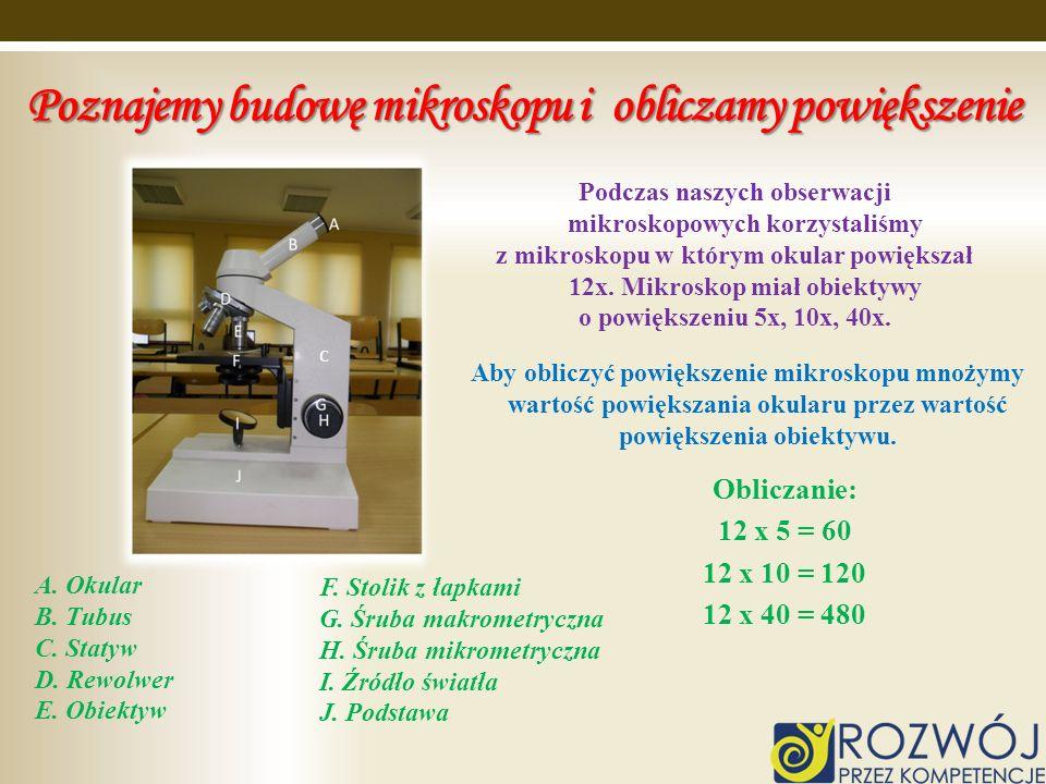 Poznajemy budowę mikroskopu i obliczamy powiększenie
