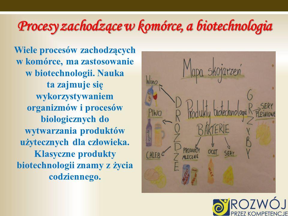 Procesy zachodzące w komórce, a biotechnologia
