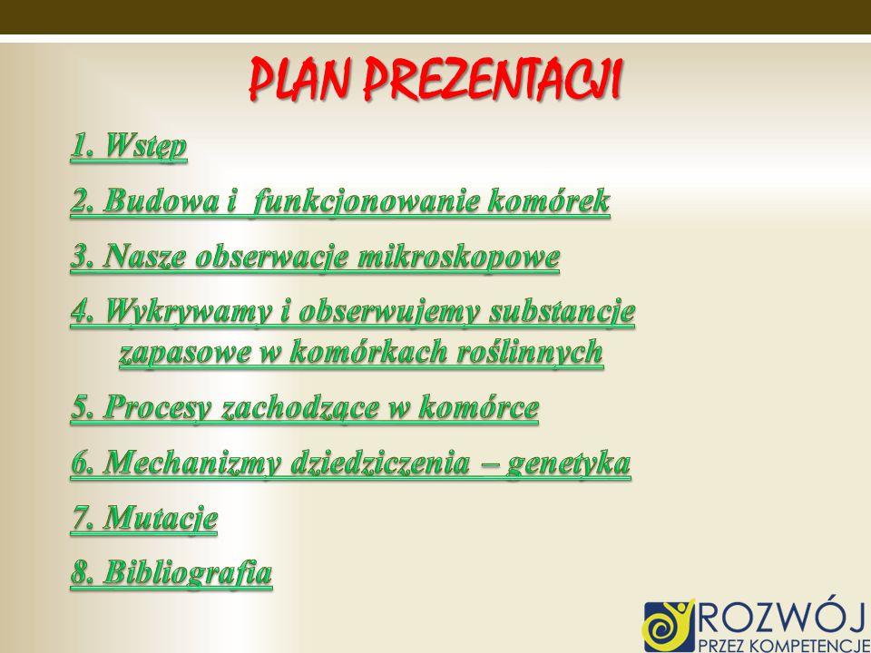 PLAN PREZENTACJI 1. Wstęp 2. Budowa i funkcjonowanie komórek