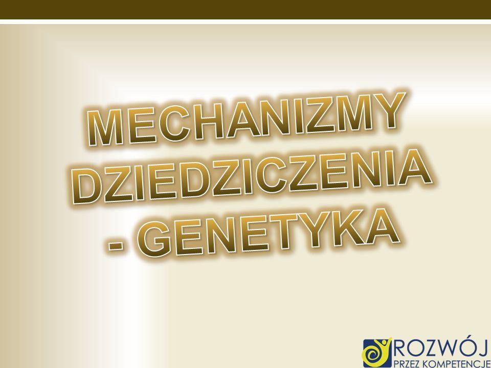 Mechanizmy dziedziczenia - genetyka