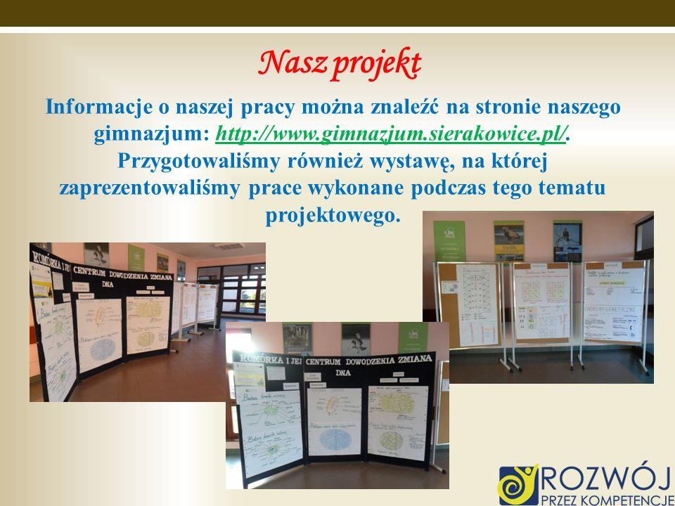 Nasz projekt