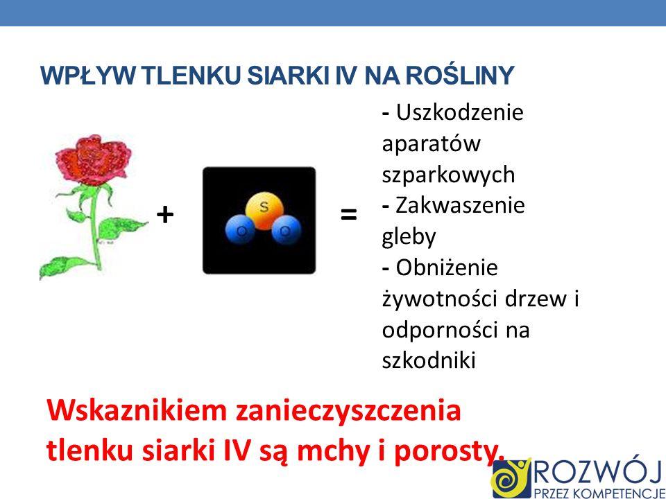 Wpływ tlenku siarki IV na rośliny