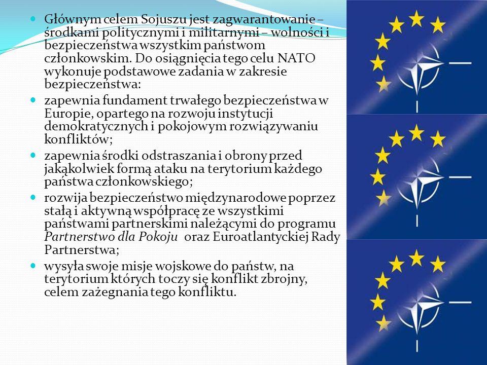 Głównym celem Sojuszu jest zagwarantowanie – środkami politycznymi i militarnymi – wolności i bezpieczeństwa wszystkim państwom członkowskim. Do osiągnięcia tego celu NATO wykonuje podstawowe zadania w zakresie bezpieczeństwa: