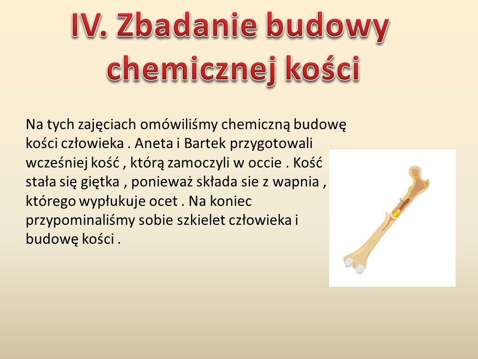 IV. Zbadanie budowy chemicznej kości