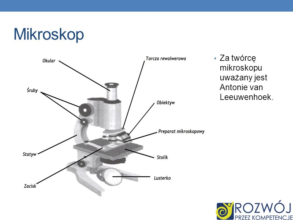 Mikroskop Za twórcę mikroskopu uważany jest Antonie van Leeuwenhoek.