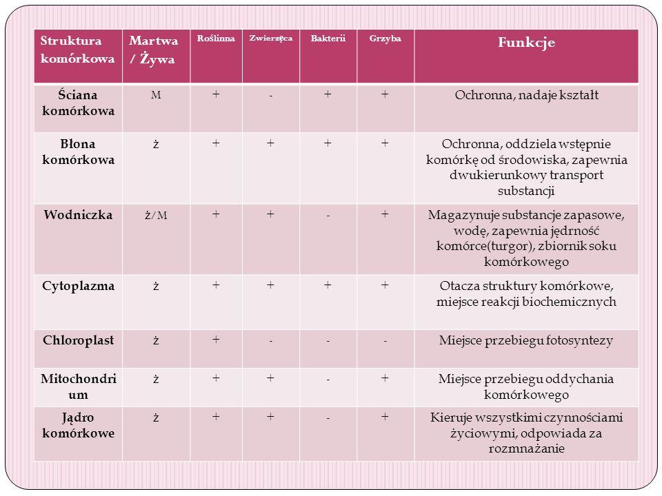 Funkcje Struktura komórkowa Martwa/ Żywa Ściana komórkowa M + -