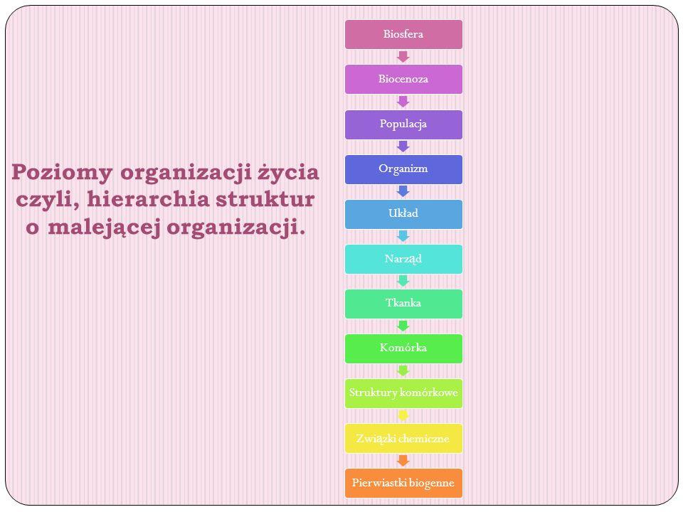 Biosfera Biocenoza. Populacja. Organizm. Układ. Narząd. Tkanka. Komórka. Struktury komórkowe.