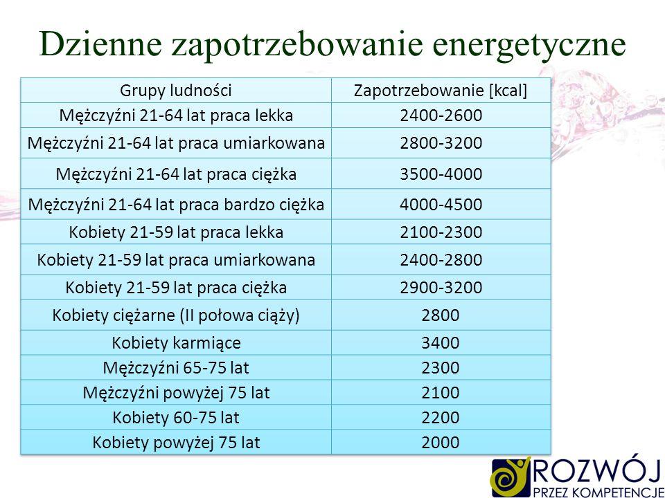 Dzienne zapotrzebowanie energetyczne