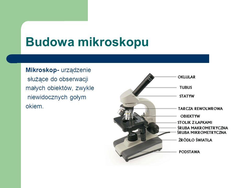 Budowa mikroskopu Mikroskop- urządzenie służące do obserwacji