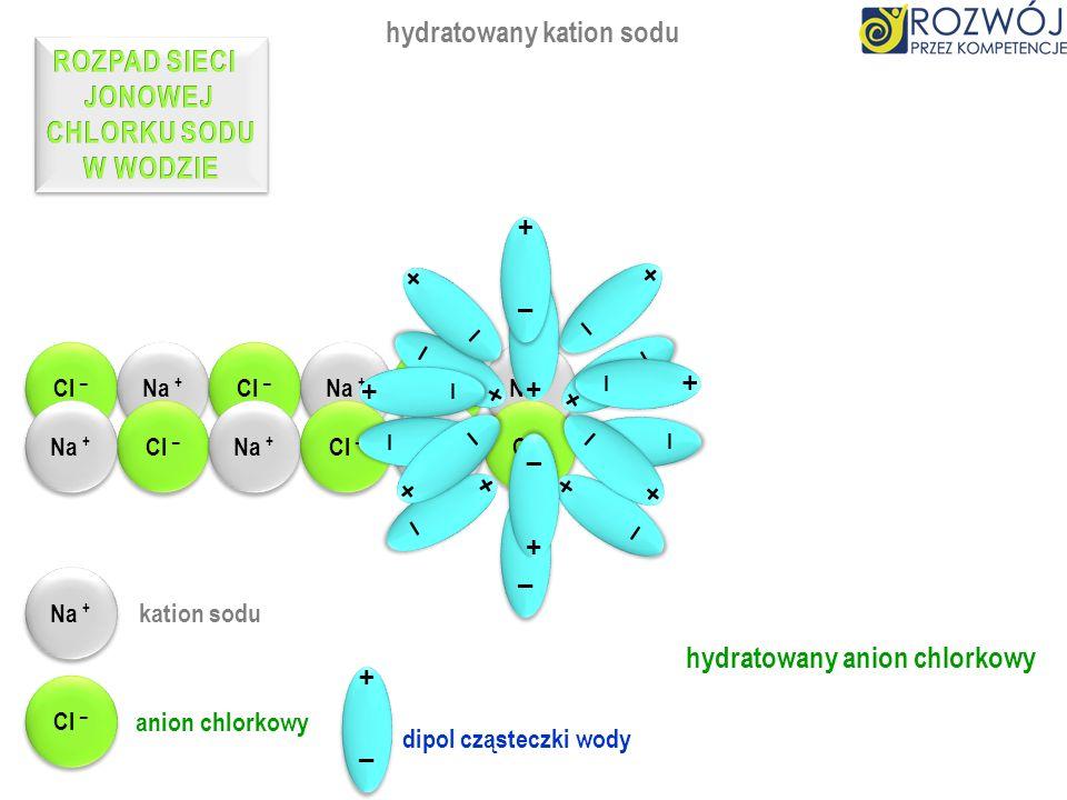hydratowany kation sodu ROZPAD SIECI JONOWEJ CHLORKU SODU W WODZIE