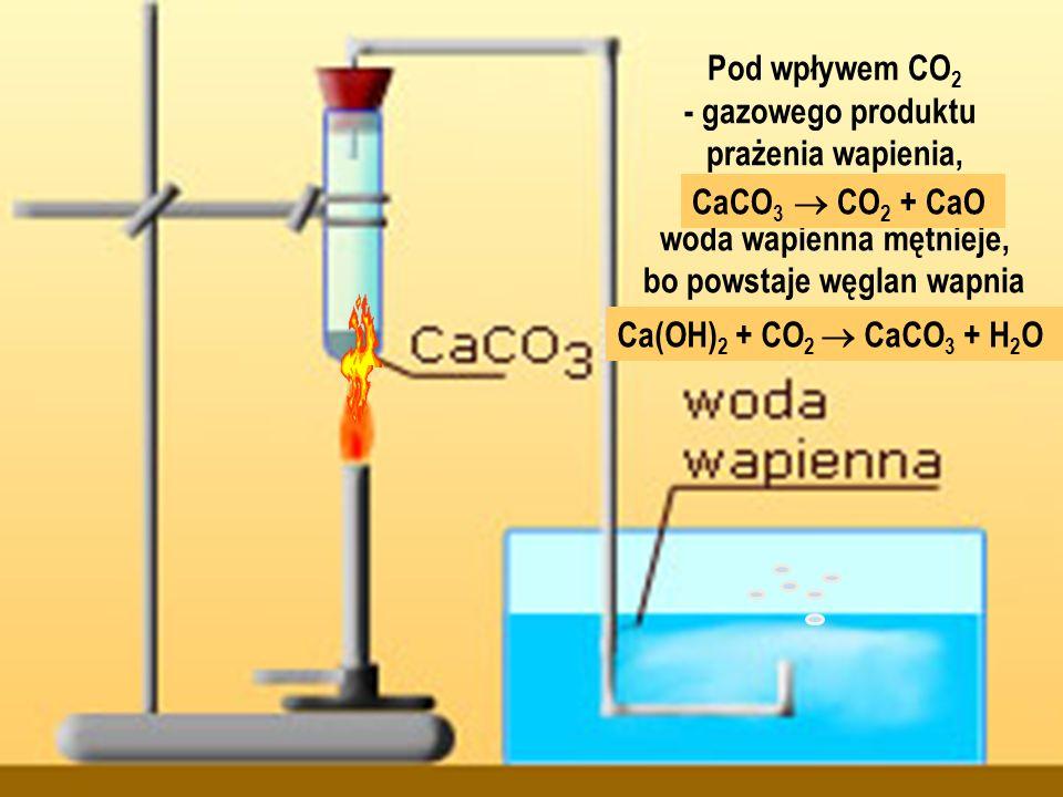 woda wapienna mętnieje, bo powstaje węglan wapnia