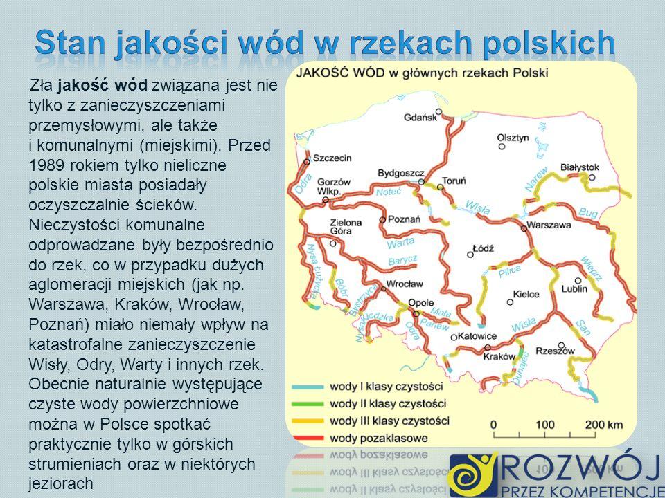 Stan jakości wód w rzekach polskich